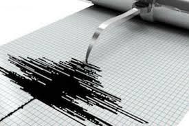 Gempa 6,6 SR Guncang Kepulauan Aru, Getaran Sampai Wamena Papua