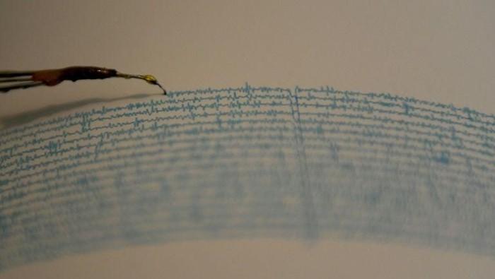Gempa M 5,1 Guncang Halmahera Malut, Tak Berpotensi Tsunami